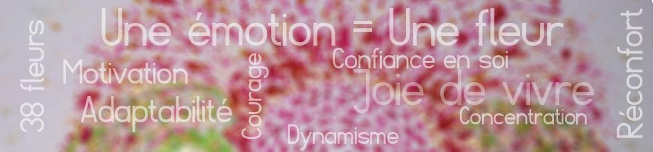 thérapie florale, une émotion:une fleur